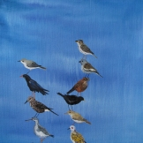 Pigeon and friends, 21x22 cm, oil on canvas, 2015