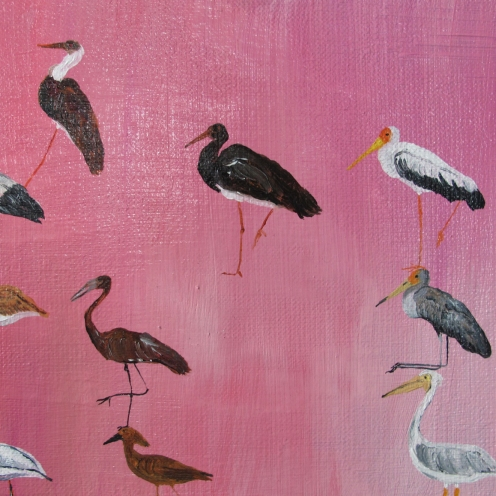 Stork pink, 21x27 cm, oil on canvas, 2015