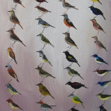 Violet-backed sunbird, 22x22 cm, oil on canvas, 2015