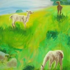 Brown Lama, oil on canvas, 80x61 cm, 2017